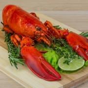 Lobster importers and wholesalers Canada | Importateurs et grossistes de homard entier cuit au Canada