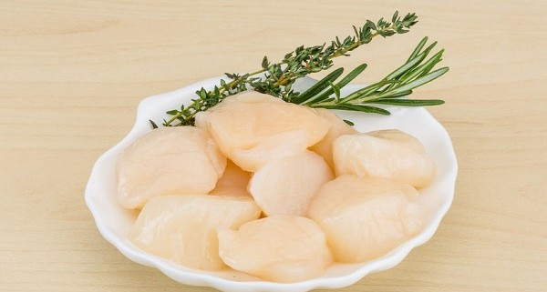 Sea scallops importers and wholesalers Canada | Importateurs et grossistes de pétoncles de mer